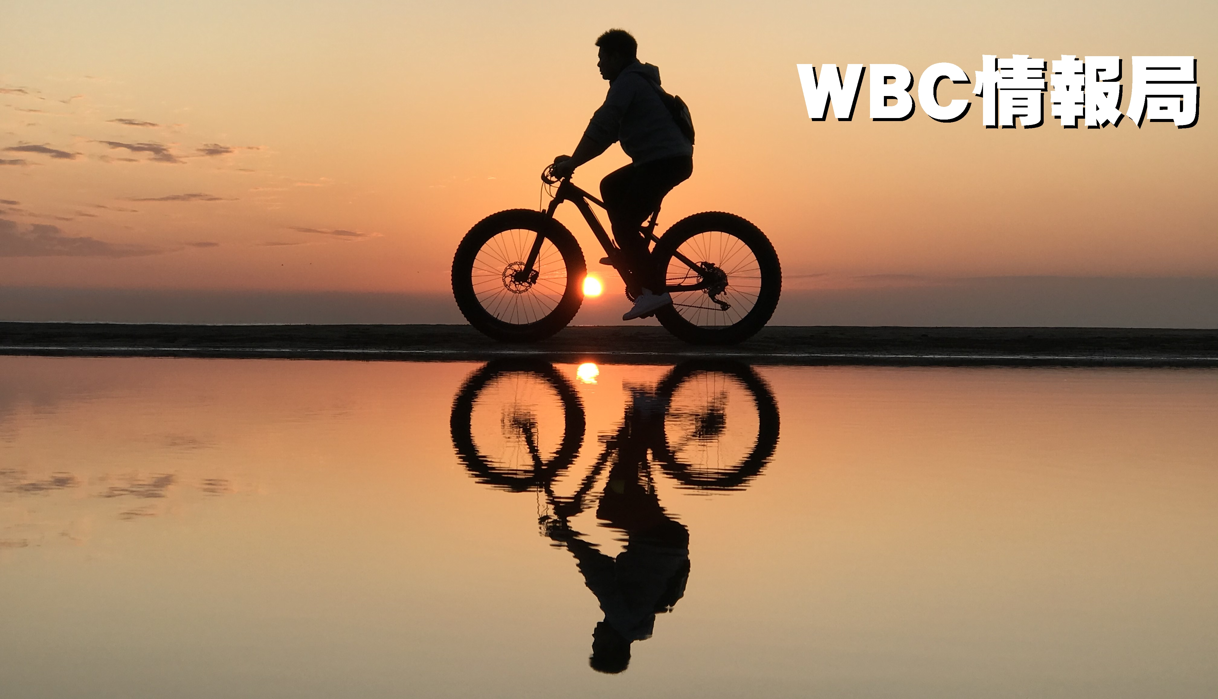 WBC情報局